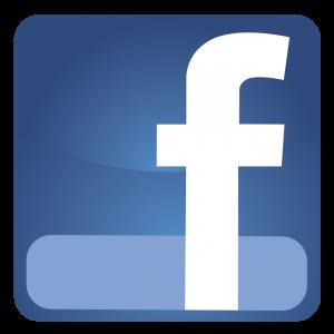 Facebook Link zu Ann I. Noll